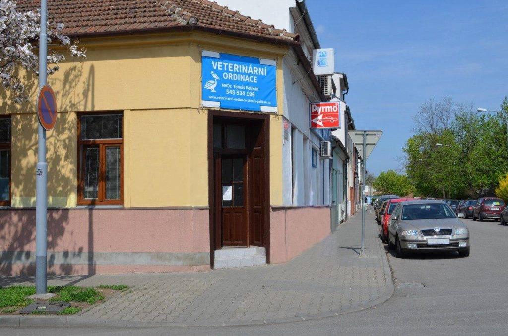 Veterina pro psy, kočky a drobné savce | MVDr. Tomáš Pelikán Brno - Židenice